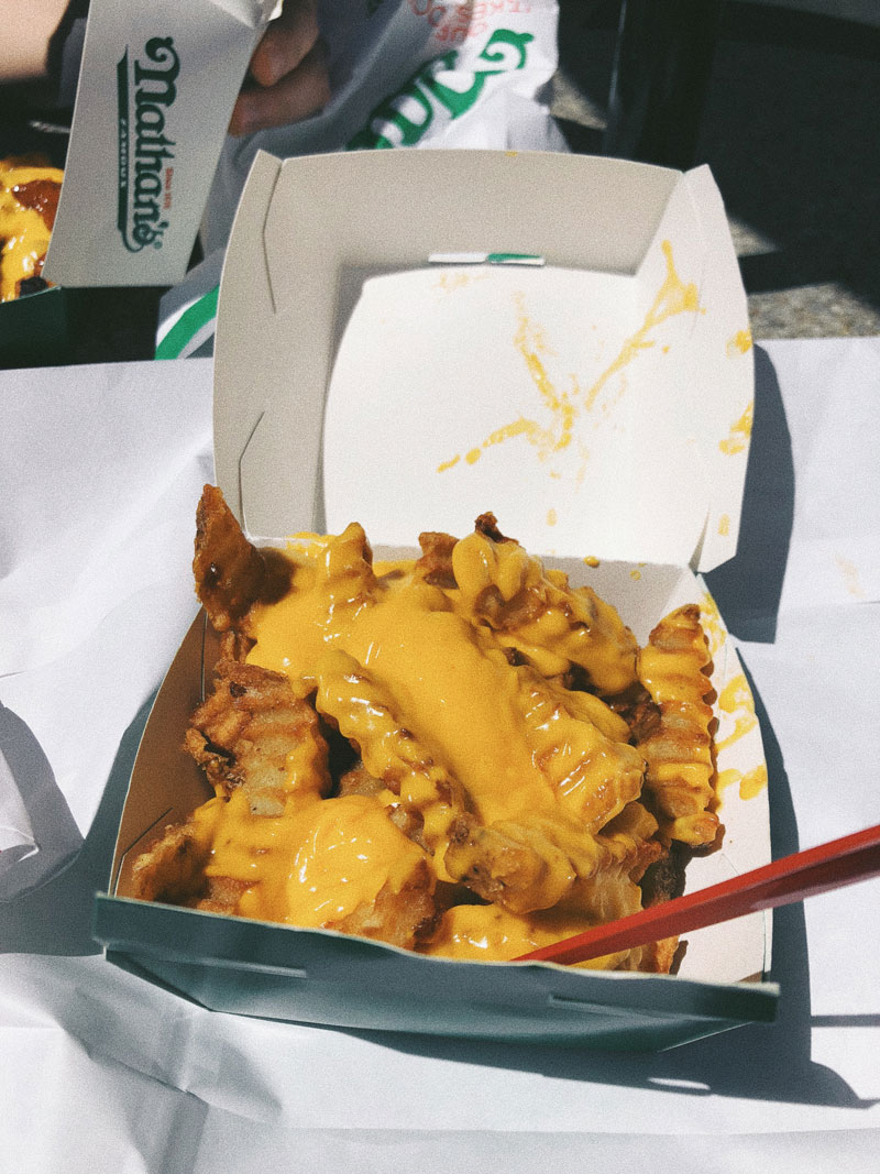 Cheese-Fries-Nathans