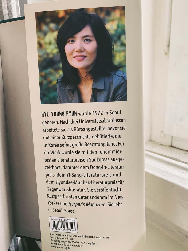 Der Riss von Pyun Hye-young